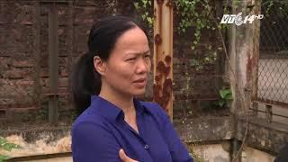VTC14 | Công trình xử lý nước thải tiền tỷ bỏ hoang ở Hà Nội
