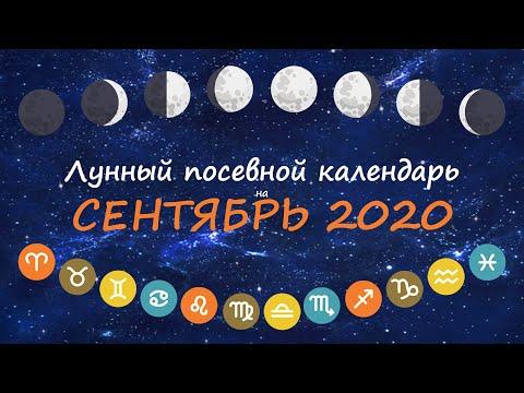 [Сентябрь 2020] Лунный посевной календарь огородника-садовода | Флористикс Инфо