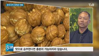 [TJB뉴스] 국민간식 호두과자   세계로 진출