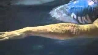 Technika pływania kraulem- Michael Phelps