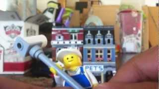 Lego Pet Shop 10218 Review