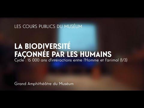 Homme/animal - La biodiversité façonnée par les humains