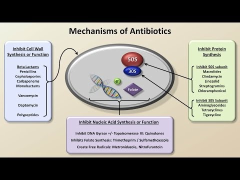 Mechanisms and Classification of Antibiotics (Antibiotics - Lecture 3)