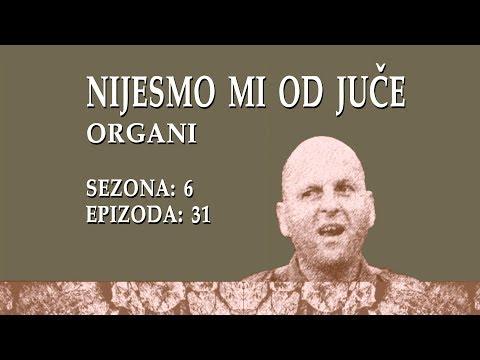 Nijesmo Mi Od Juce - Organi (BN Televizija 2019)