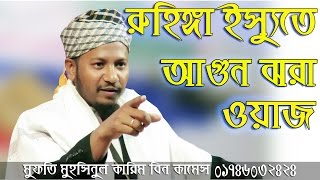 রুহিঙ্গা ইস্যুতে আগুন ঝরা বক্তব্য Muhsinul Karim Bin Kasem bangla Waz 2017-01746032424