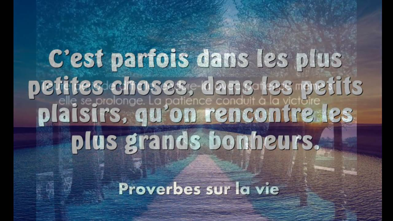 Citations Et Proverbes D Amour