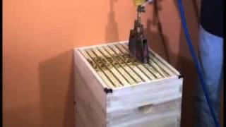 Marcador A Fuego Colmenas - La Tienda Del Apicultor