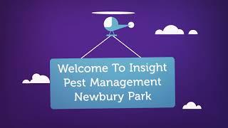 Insight Pest Management - Termite Inspection in Camarillo, CA