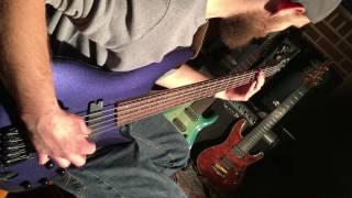 Forsythia - Sonder - Bass Guitar Playthrough