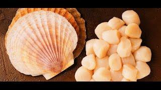 Готовлю консервированный морской гребешок