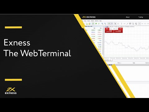 let's-try-the-webterminal