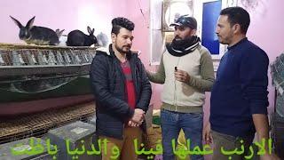 ارانب ابو نرمين تخليك تيجى المسافه دى كلها...(حلقه 642)