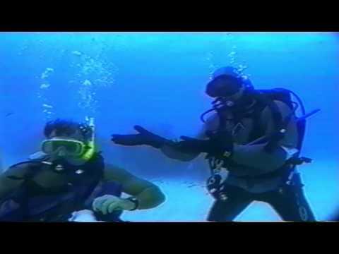 Underwater Explorer - Diving with Sharks