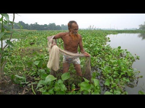 Net Fishing   Catching Big Fish By Cast Net   Fishing With Beautiful Nature (Part-41)