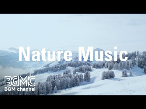 Nature Music: Serene Piano Instrumental - Calm Guitar Music for Stroll, Yoga, Resting, Relax