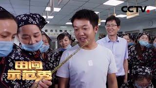 《田间示范秀》提升自我卖农货 20200323 | CCTV农业