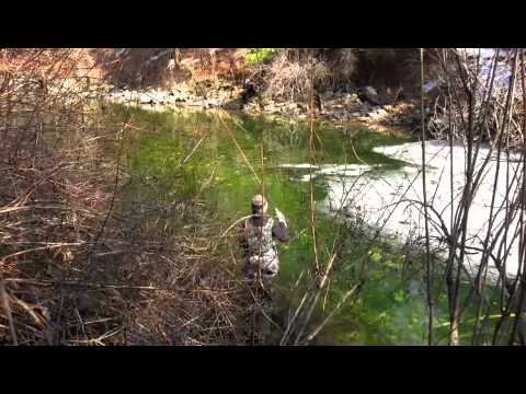 Fly fishing the swift river march 2011 youtube for Swift river fly fishing