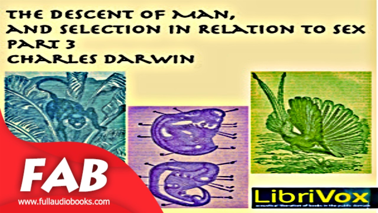 Download The Descent of Man and Selection in Relation to Sex, Part 3 Full Audiobook by Charles DARWIN