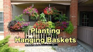 Planting Some Hanging Baskets