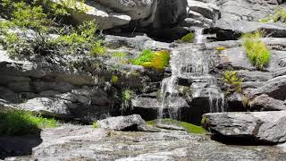 Cascade of tranquility,Relaxing Music with Water Sounds Meditation,Koto Music,Japponese music
