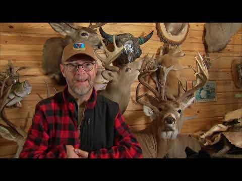 Dayton's First Deer And Euro Mounting