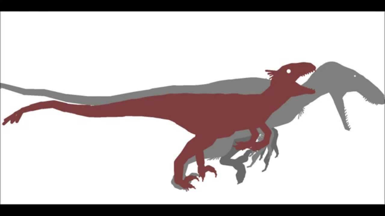 PPBA Utahraptor vs Gigantoraptor - YouTube