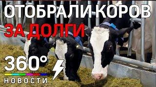 У женщины-фермера украли коров из-за долгов по аренде