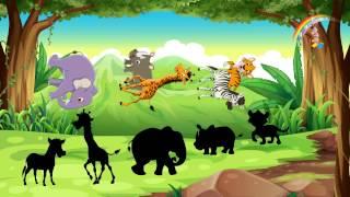 Загадки про животных. Найди тень. Развивающий мультфильм для детей