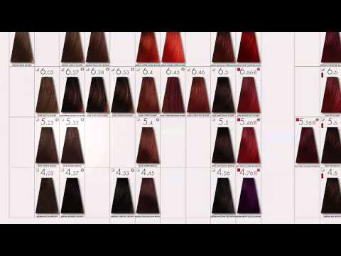 HOW TO  get started with Keune Color
