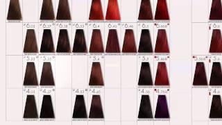 Keune Tinta Color Chart