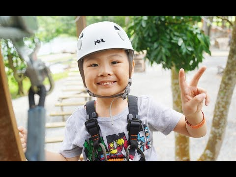 Forest Adventure Outdoor Play With Breeze Singapore