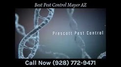 Best Pest Control Mayer AZ