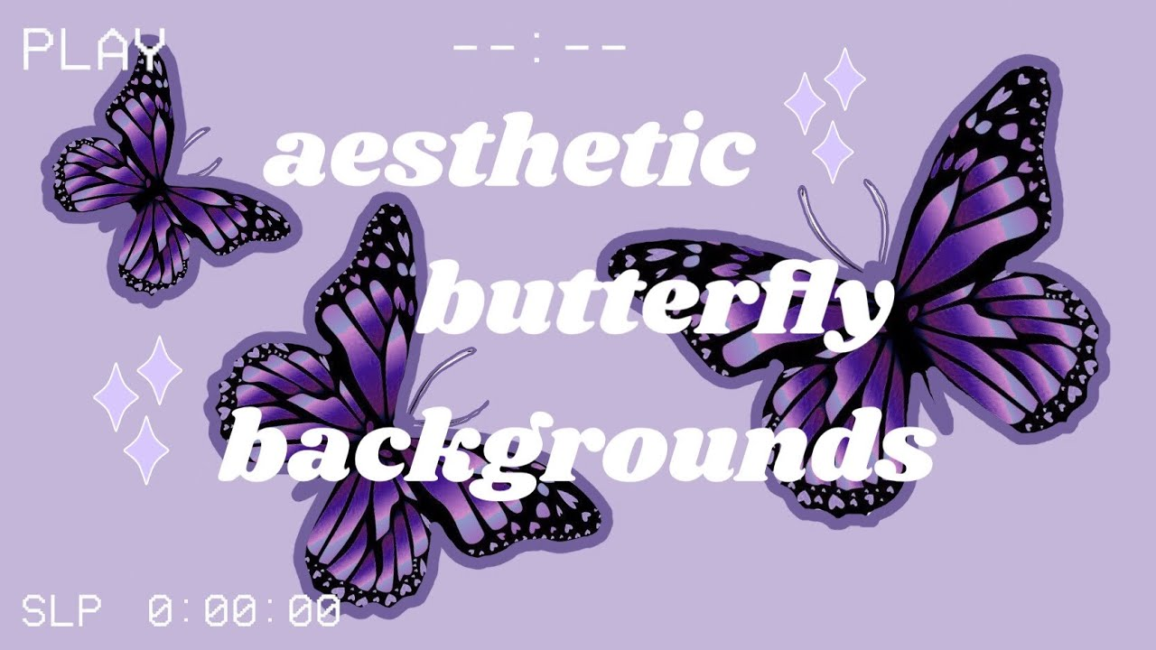 Aesthetic Butterfly Background Animations Youtube