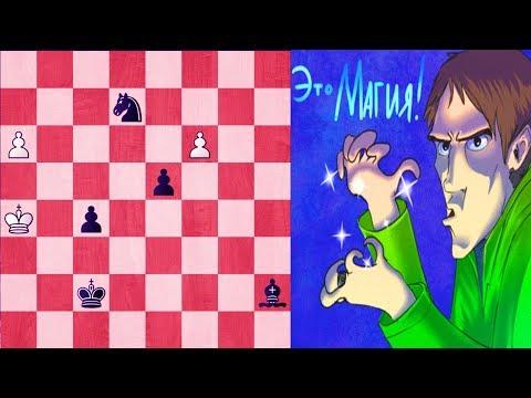 ШАХМАТНЫЙ ЭТЮД. Магия на шахматной доске- Гарри Поттер отдыхает!