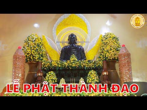 Lễ Phật Thành Đạo - Chùa Long Hương