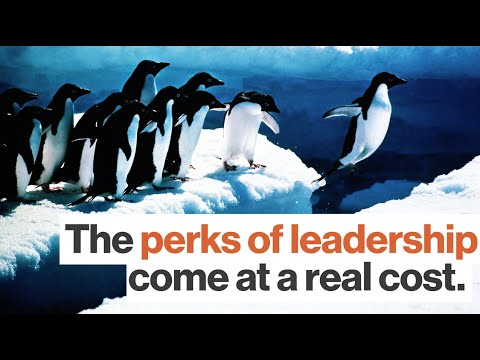 The Benefits of Being a Leader Are Real. But Are There Costs? With Simon Sinek