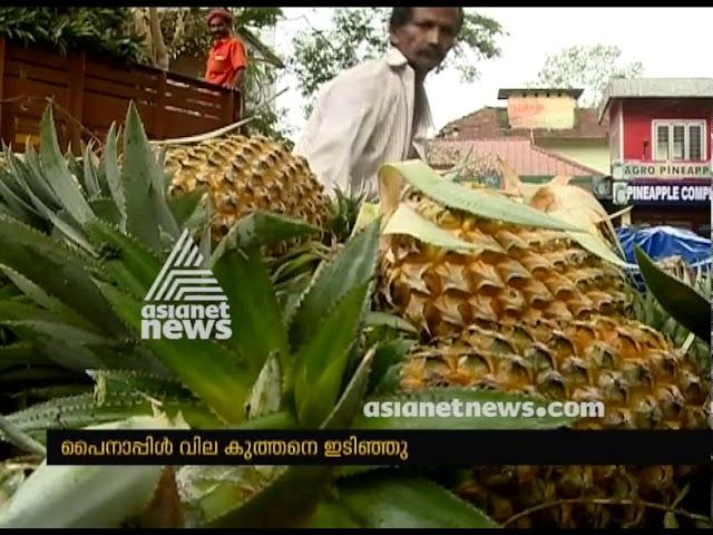 Huge decrease in Pineapple price