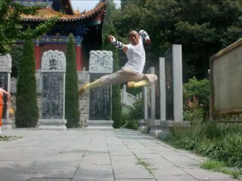 Maestro Shaolin Shi