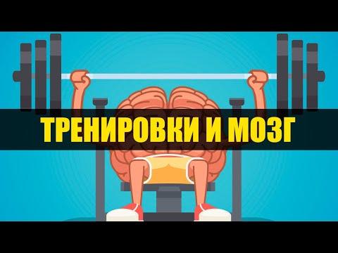 Как физическая активность влияет на человека
