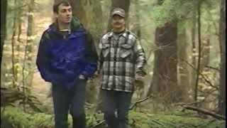 The Wilderness Society and Friends of Allegheny Wilderness Tionesta Old-Growth Footage