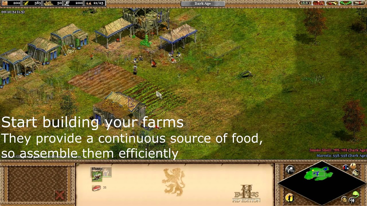 age of empires 2 tipps