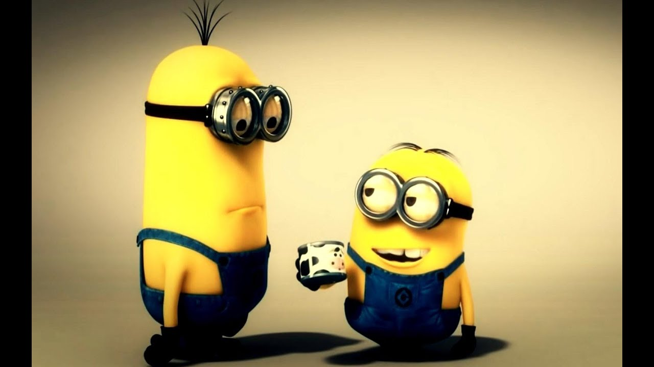 minions cow ringing hd 1080p - youtube