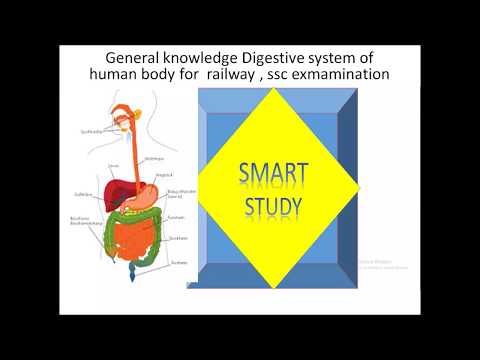 biology lecture digestive syste mrail way group d  .ssc cgl ssc chsl ssc mts ssc cpo 2018