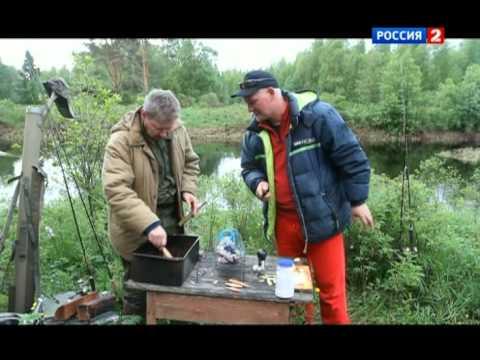 Диалоги о рыбалке. Вологодская область. Часть 1.
