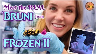 Meet the REAL 'Bruni' from Frozen 2! | Maddie Moate