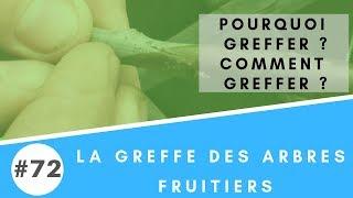 #72 Pourquoi et comment greffer des arbres fruitiers pour votre autonomie alimentaire ?
