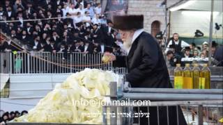 Lag Baomer 5776 With Toldos Aharon Rebbe In Meron