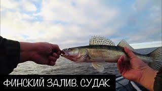 Риболовля на Фінській Затоці. Судака на джиг