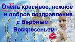 Красивое поздравление к Вербному Воскресенью Видео открытка с Вербным Воскресеньем