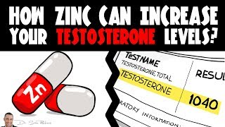 How Zinc Can Increase Your Testosterone Levels?